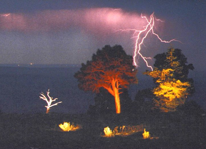 Lightning Tree North Rim GCNP