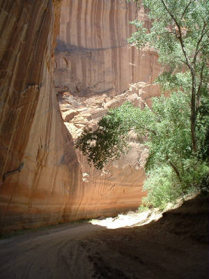 Canyon DeChelly Cliffs.